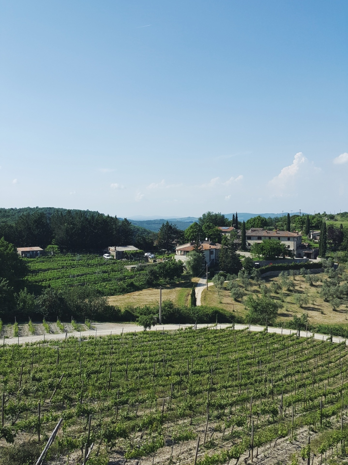 Chianti Winery Tour | Italy